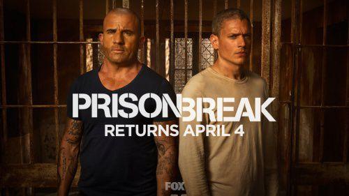 Prison Break trở lại màn ảnh nhỏ 2017 sau 8 năm (3)