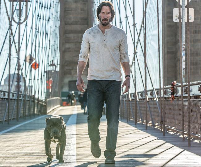 John Wick 2: Nhà không có nhưng chó nhất định phải có một con (3)